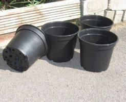 サボテン 鉢 穴 缶 黒 プラ鉢