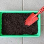 サボテンを育てる際に使う土の種類と量は?肥料の与え方は?