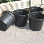 穴無し缶や黒プラ鉢は、サボテンの鉢として使えるの?